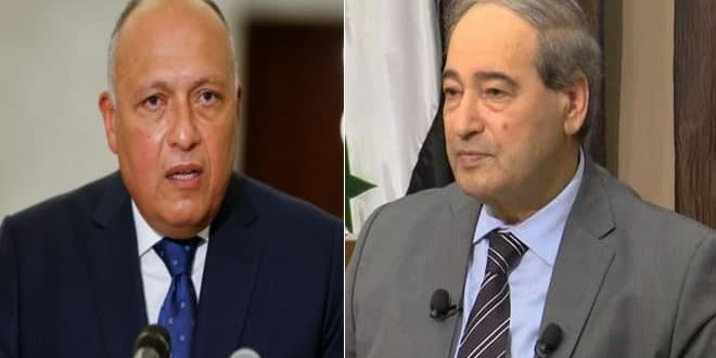 Mikdad stresses importance of historic relations between Syria and Egypt